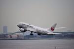 金魚さんが、羽田空港で撮影した日本航空 787-846の航空フォト(写真)