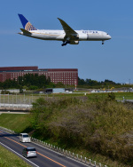 パンダさんが、成田国際空港で撮影したユナイテッド航空 787-822の航空フォト(写真)