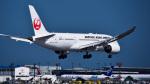 パンダさんが、成田国際空港で撮影した日本航空 787-8 Dreamlinerの航空フォト(写真)