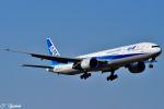 吉田高士さんが、成田国際空港で撮影した全日空 777-381/ERの航空フォト(写真)