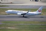 msrwさんが、羽田空港で撮影した日本航空 737-846の航空フォト(写真)