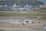 ja0hleさんが、名古屋飛行場で撮影した海上自衛隊 SH-60Kの航空フォト(写真)