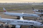 msrwさんが、羽田空港で撮影した日本航空 777-346の航空フォト(写真)