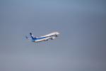 msrwさんが、羽田空港で撮影した全日空 737-881の航空フォト(写真)
