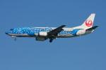こすけさんが、羽田空港で撮影した日本トランスオーシャン航空 737-4Q3の航空フォト(写真)