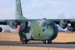 こすけさんが、入間飛行場で撮影した航空自衛隊 C-130H Herculesの航空フォト(写真)
