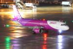 こすけさんが、羽田空港で撮影したピーチ A320-214の航空フォト(写真)