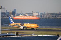 msrwさんが、羽田空港で撮影した全日空 777-281/ERの航空フォト(写真)