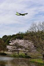 ポン太さんが、成田国際空港で撮影したジンエアー 737-8B5の航空フォト(写真)