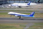 msrwさんが、羽田空港で撮影した全日空 A320-211の航空フォト(写真)