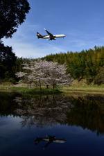 ポン太さんが、成田国際空港で撮影したUPS航空 767-34AF/ERの航空フォト(写真)