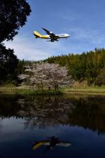 ポン太さんが、成田国際空港で撮影したポーラーエアカーゴ 747-46NF/SCDの航空フォト(写真)