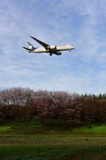 ポン太さんが、成田国際空港で撮影したアエロメヒコ航空 787-8 Dreamlinerの航空フォト(写真)