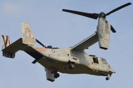 350JMさんが、厚木飛行場で撮影したアメリカ海兵隊 MV-22Bの航空フォト(写真)
