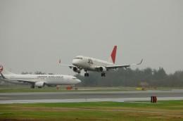 青森空港 - Aomori Airport [AOJ/RJSA]で撮影された青森空港 - Aomori Airport [AOJ/RJSA]の航空機写真