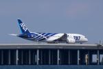 かずまっくすさんが、羽田空港で撮影した全日空 787-881の航空フォト(写真)