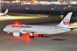 トロピカルさんが、羽田空港で撮影した日本航空 787-846の航空フォト(写真)