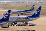 虎太郎19さんが、福岡空港で撮影した全日空 737-881の航空フォト(写真)