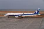 はるさんが、山口宇部空港で撮影した全日空 A321-211の航空フォト(写真)