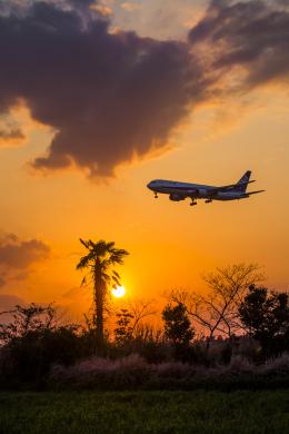 mameshibaさんが、成田国際空港で撮影した全日空 767-381/ERの航空フォト(写真)