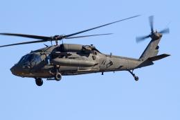 Echo-Kiloさんが、厚木飛行場で撮影したアメリカ陸軍 UH-60L Black Hawk (S-70A)の航空フォト(写真)