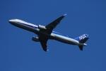 twining07さんが、羽田空港で撮影した全日空 A321-211の航空フォト(写真)