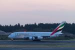 岡崎美合さんが、成田国際空港で撮影したエミレーツ航空 A380-861の航空フォト(写真)