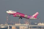 安芸あすかさんが、羽田空港で撮影したピーチ A320-214の航空フォト(写真)