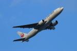 ceskykrumlovさんが、羽田空港で撮影した日本航空 777-246/ERの航空フォト(写真)
