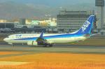 fukucyanさんが、伊丹空港で撮影した全日空 737-881の航空フォト(写真)