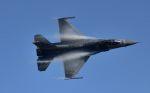 こびとさんさんが、新田原基地で撮影したアメリカ空軍 General Dynamics F-16 Fighting Falconの航空フォト(写真)
