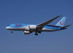Willieさんが、成田国際空港で撮影したTUIフライ・ネーデルランド 787-8 Dreamlinerの航空フォト(写真)