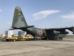 ヨッちゃんさんが、厚木飛行場で撮影した航空自衛隊 C-130H Herculesの航空フォト(写真)