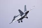 Aurora56さんが、厚木飛行場で撮影したアメリカ海軍 F/A-18の航空フォト(写真)