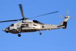 Echo-Kiloさんが、厚木飛行場で撮影したアメリカ海軍 MH-60R Seahawk (S-70B)の航空フォト(写真)
