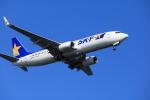 msrwさんが、羽田空港で撮影したスカイマーク 737-86Nの航空フォト(写真)