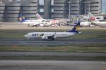 msrwさんが、羽田空港で撮影したスカイマーク 737-8FZの航空フォト(写真)