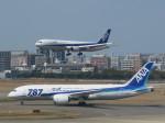 今ちゃんさんが、福岡空港で撮影した全日空 787-881の航空フォト(写真)