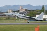 夏みかんさんが、名古屋飛行場で撮影した航空自衛隊 F-15J Eagleの航空フォト(写真)