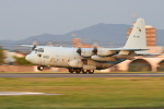 夏みかんさんが、名古屋飛行場で撮影した航空自衛隊 C-130H Herculesの航空フォト(写真)