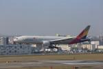 meijeanさんが、福岡空港で撮影したアシアナ航空 777-28E/ERの航空フォト(写真)