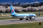 アミーゴさんが、松本空港で撮影した大韓航空 737-8LHの航空フォト(写真)