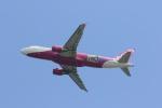 ぷぅぷぅまるさんが、関西国際空港で撮影したピーチ A320-214の航空フォト(写真)