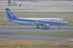 amagoさんが、羽田空港で撮影した全日空 A320-211の航空フォト(写真)
