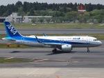 51ANさんが、成田国際空港で撮影した全日空 A320-271Nの航空フォト(写真)