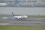 hareotokoさんが、羽田空港で撮影したスカイマーク 737-8FZの航空フォト(写真)