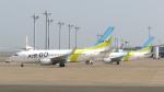 誘喜さんが、羽田空港で撮影したAIR DO 737-781の航空フォト(写真)