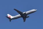 Timothyさんが、成田国際空港で撮影した中国国際航空 737-86Nの航空フォト(写真)