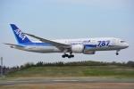SKY☆101さんが、成田国際空港で撮影した全日空 787-881の航空フォト(写真)