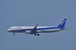 CB20さんが、関西国際空港で撮影した全日空 A321-211の航空フォト(写真)